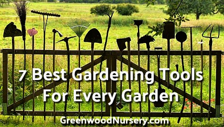 Garden Tools Every Homeowner Should Have