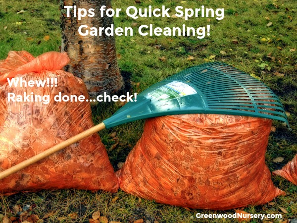 Tips for easy spring garden cleaning