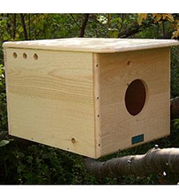 Barn Owl House