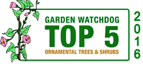 Garden Watchdog's Top 5 Nurseries For Trees and Shrubs - GreenwoodNursery.com