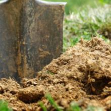 Green Tek Soil Conditioner